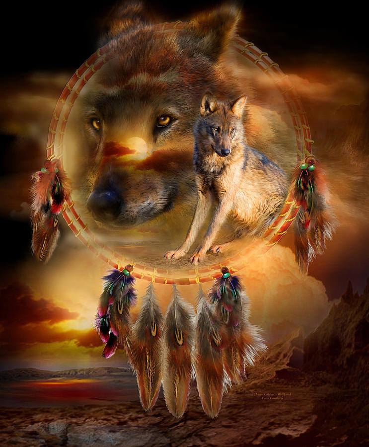 dream-catcher-wolfland-carol-cavalaris