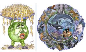 earth transformation -population